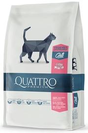 Quattro toit steriliseeritud kassidele 1.5kg linnulihaga