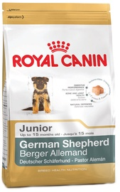 Royal Canin BHN German Shepherd Junior 12kg
