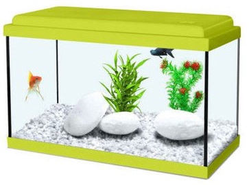Zolux Aquarium Nanolife Kidz 35 Green