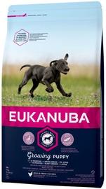 Kuiv koeratoit Eukanuba Growing, 3 kg