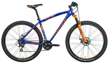 "Jalgratas Torpado Icaro T730 48cm 29"" Blue 18"