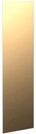 Skyland Raut RGD 42-2 Door Glass 32.9x102.2x0.9cm Bronze
