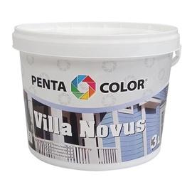 Fassaadivärv Villa Novus antratsiit 3L