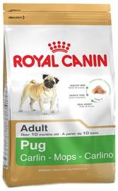 Royal Canin BHN Pug Adult 1.5kg