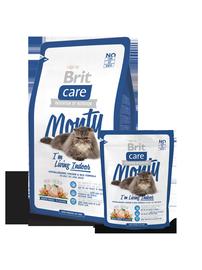 Kuivtoit kassidele Brit Care Cat Monty Indoor, 400 g