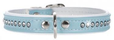 Hunter Collar Modern Art Luxus 24/11 Blue