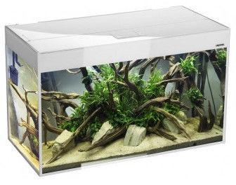 Aquael Aquarium Glossy ST80 White
