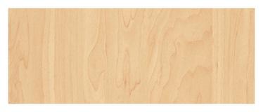 Kleepkile Beech pale N 11173, 90 cm, 15