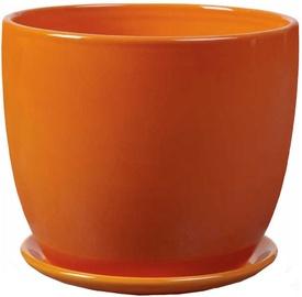 Polnix Amsterdam 13 x 12cm Orange
