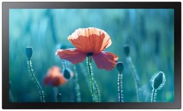 Монитор Samsung QB13R-T, 13″, 8 ms