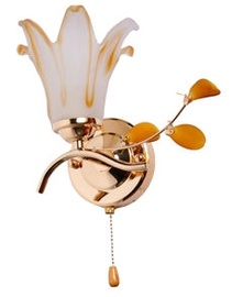 ZHONGSHAN 149754 Wall Lamp