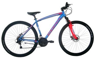 """Jalgratas Coppi MTB Man Blue/Red, 19"""", 29"""""""