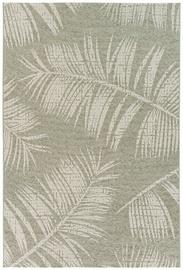 Domoletti Velvet VLT8944 H816 Carpet 200x290cm