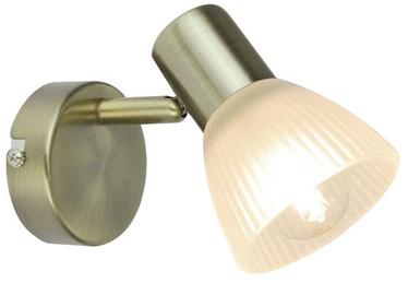 Verners Spotlight PAUL 148253 Brass