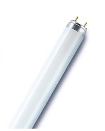 Osram Natura Lamp 30W G13