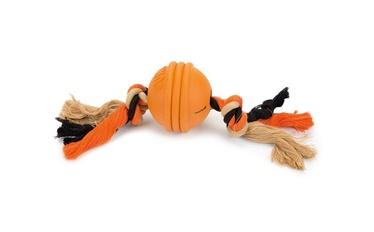 Mänguasi koertele Beeztees, 31,8 cm