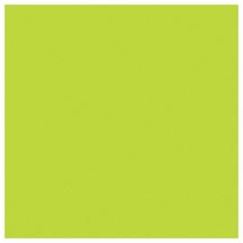 SN Napkins 33x33cm 20pcs Green