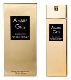 Alyssa Ashley Ambre Gris 100ml EDP