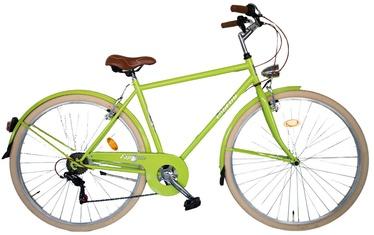 """Jalgratas Esperia Urban 106000U, roheline, 28"""""""