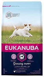 Eukanuba Puppy Small Breeds Chicken 1kg