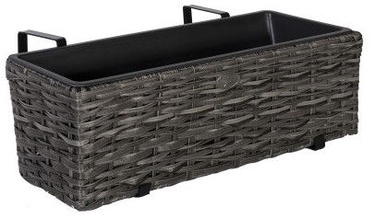 Home4you Wicker 60x19xH18cm Gray