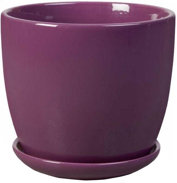 Polnix Amsterdam 13 x 12cm Violet