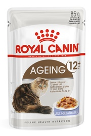 Royal Canin FHN Ageing +12 In Jelly 85g 12pcs