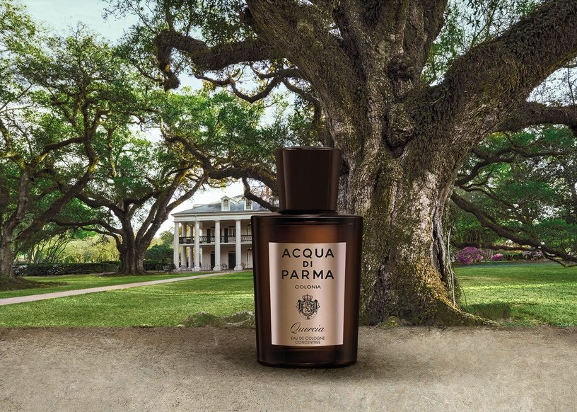 Acqua di Parma Colonia Quercia 100ml EDC