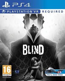 Blind VR PS4