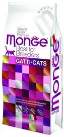Monge Best for Breeders Kitten 10kg
