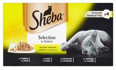 Sheba Tray Poultry Meat 4x85g