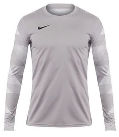 Nike Dry Park IV Jersey Long Sleeve Junior CJ6072 052 Grey S