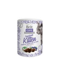 Kassitoit Brit Care Cat Superfruits Kitten, 100 g