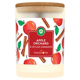 Lõhnaküünal Airwick Apple Orchard, 185 g, 54 h