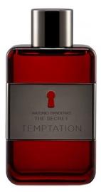 Antonio Banderas The Secret Temptation 50ml EDT