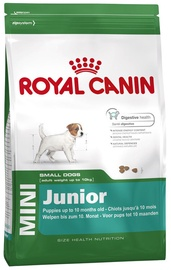 Royal Canin SHN Mini Junior 8kg