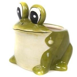 Verners Frog Flower Pot Green 9cm