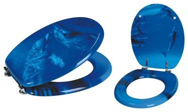 Prill-laud Fdomoletti P7130, sinine