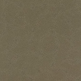 Rasch Vinyl Wallpaper 422078 Brown