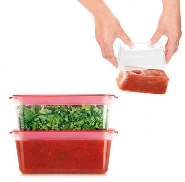 Tescoma Purity Healthy Mini Containers For Freezer 0.3l 2 pcs