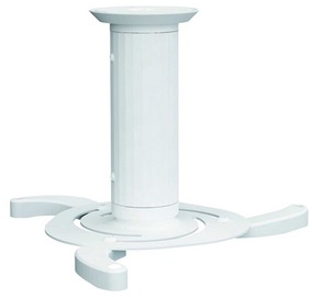 NewStar Beamer Ceiling Mount BEAMER-C80 White