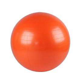 Võimlemispall VirosPro Sports LS3221, 55 cm