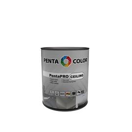 Värv pentacolor pentapro ceiling vlg 1l