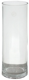 Home4you Vase In Home D18xH50cm Transparent
