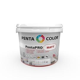 Pentacolor PentaPro Matt White 5l