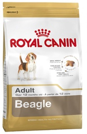 Royal Canin BHN Beagle Adult 3kg