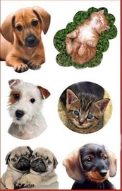 Herlitz Stickers Dog/Cat