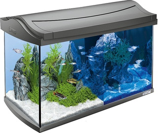 Tetra AquaArt Aquarium LED 60l Grey