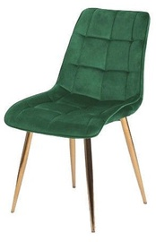 Söögitoa tool Signal Meble Chic Velvet Green/Gold, 1 tk