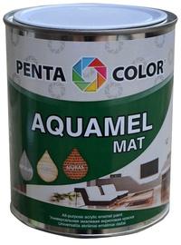 Värv aquamel 0,7kg tumesinine matt